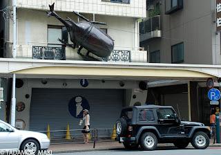 A big beetle, Tokyo, Japan