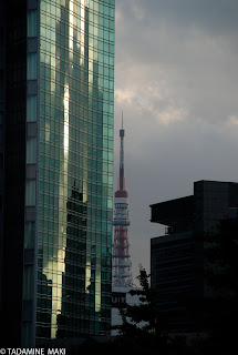 The tower and a building
