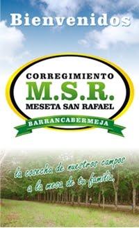 Informativo M.S.R.