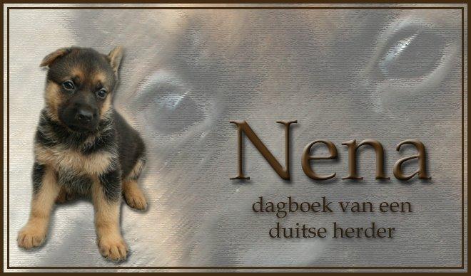 Nena, dagboek van een duitse herder