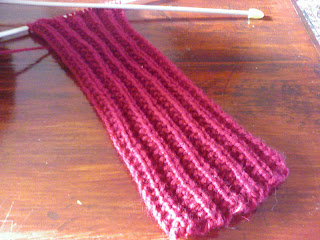 Knitting Pattern Mistake Rib Scarf : Christmas Knit Along: November 2007