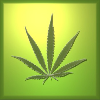 mision Marihuana-hoja