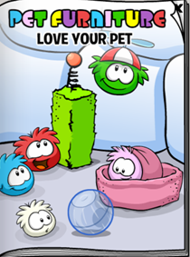 Pet Furniture