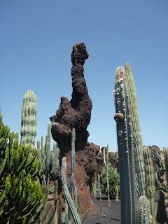Jardín de Cactus II