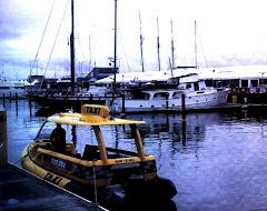 Taxis acuaticos