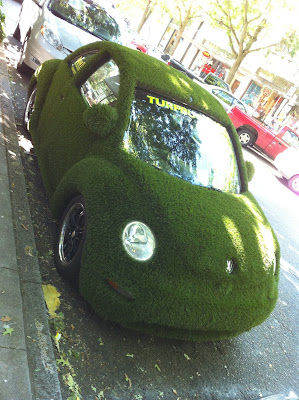 Turf Beetle front