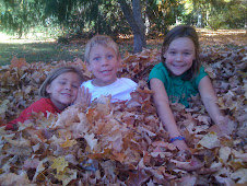 Fall Favorite- leaf pile jumping!