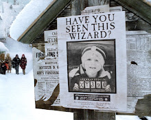 Aiden  is a wizard!?