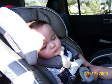 Braden's Big Boy carseat