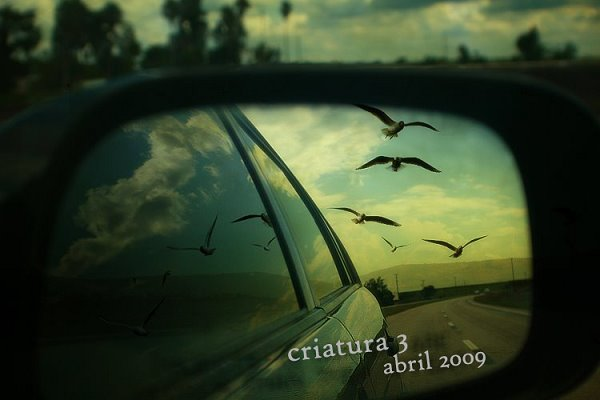 [criatura-abril2009.bmp]