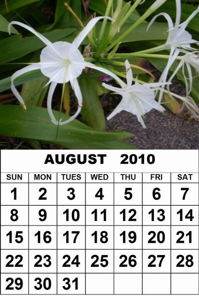 april 2010 calendar printable. Free 2010 printable calendar