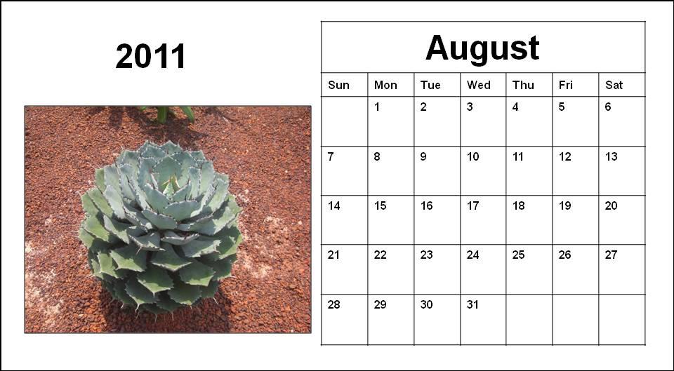 blank calendar 2011 australia. -2011 calendar- lank
