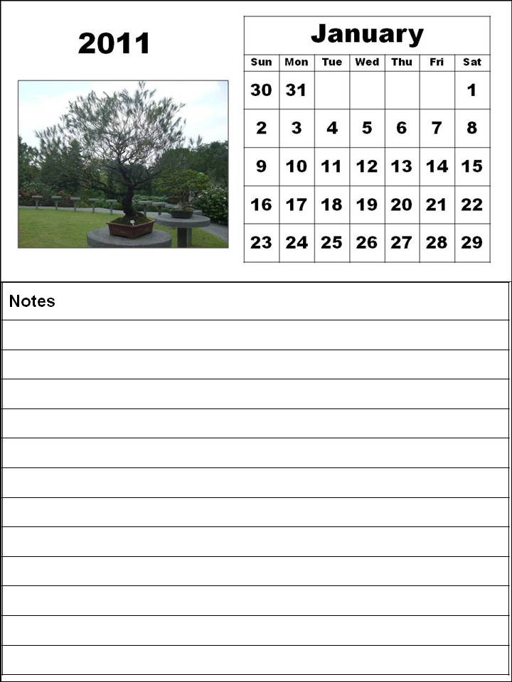Homemade Printable Calendar 2011 January with big fonts and notes