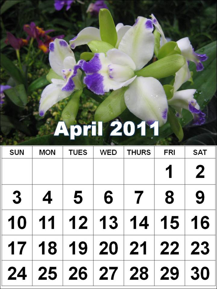 april may calendar 2011. 2011 calendar april may june.