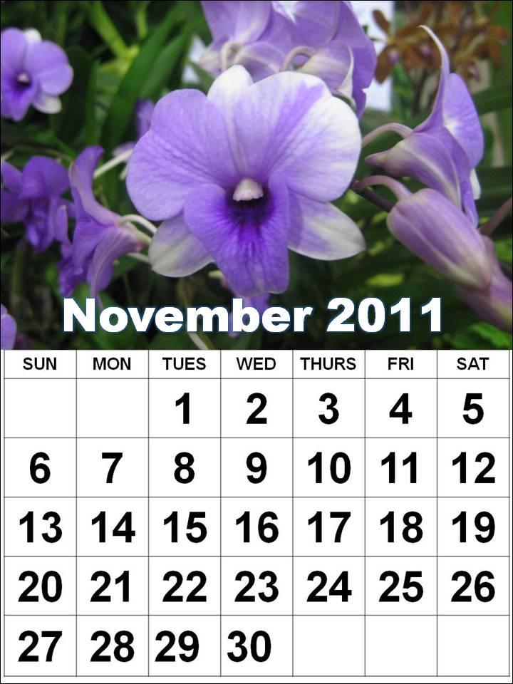 Printable November 2011 Calendar with big fonts