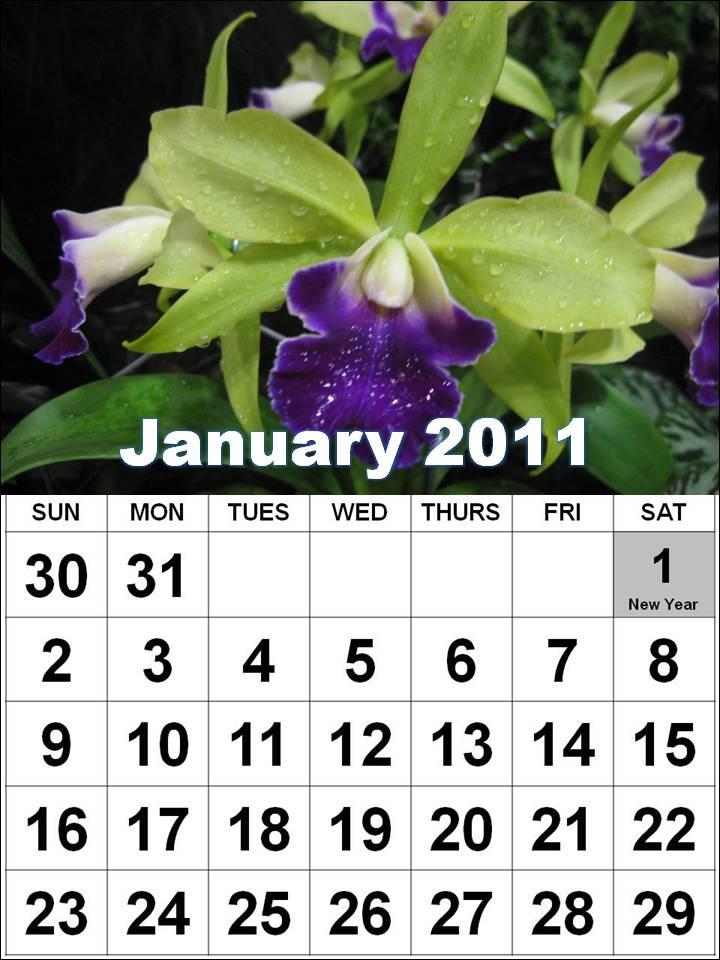 printable calendar 2011 canada. makeup printable calendar 2011