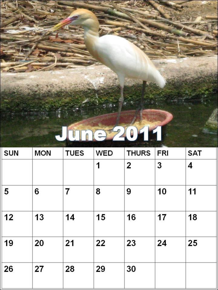june 2011 calendar blank. lank june calendar 2011. june