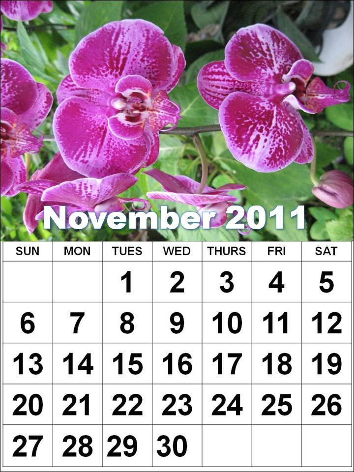 november calendar pictures. 2011 november calendar. diy