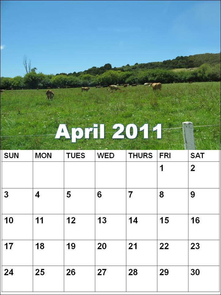 2011 calendar nz. april 2011 calendar with