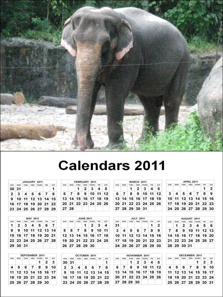 PRINTABLE YEAR 1 PAGE VIEW CALENDAR 2011