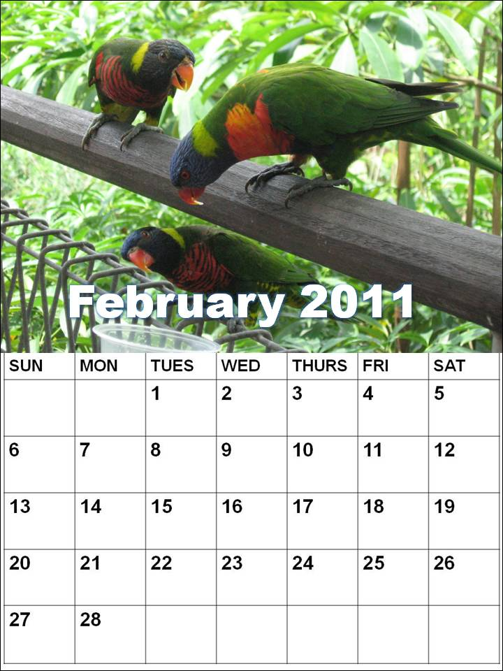 february 2011 calendar with holidays. february 2011 calendar