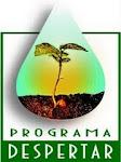 Programas e projetos em desenvolvimento