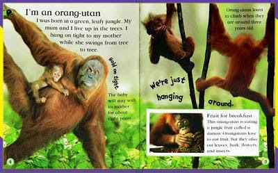McDonalds DK Watch Me Grow Books - Apes inside pages example