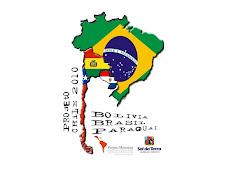 Proj. CHILE 2010-11