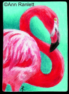 Pink 8 - color pencil drawing by Ann Ranlett