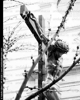 http://www.andaluciaimagen.com/Figura-de-Cristo-crucificado--Semana-Santa--Albacete_21925.jpg
