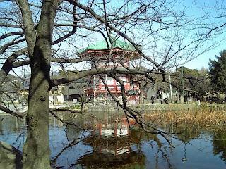 view of bentendo from shinobazu pond