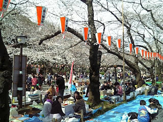 Hanami in ueno park