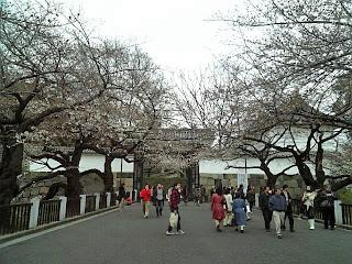 entrance of kitanomaru park
