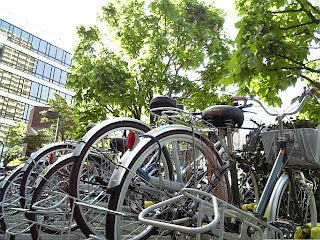 bicycle parking in spring