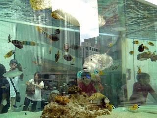 Sony Aquarium 2009