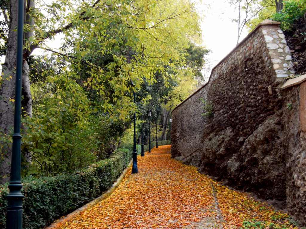 Granada detalles oto o en los bosques de la alhambra - Fotos bonitas de otono ...