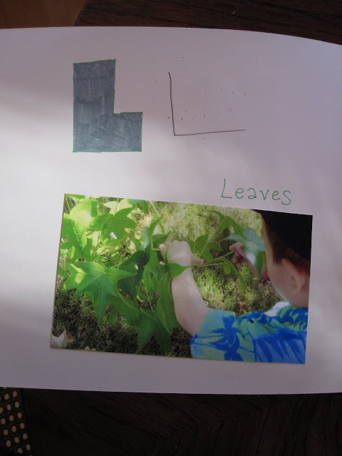 L is for leaves