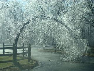 1000 images about ice storms sculptures on pinterest for 12 rose terrace clark nj