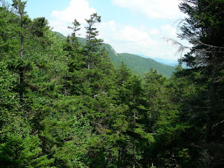 a view of the White Mountains, from Lost River gorge