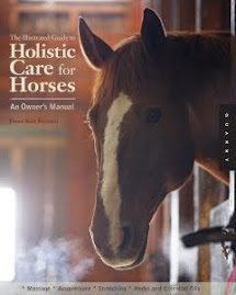 Holistic Care For Horses by Denise Bean - Raymond