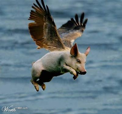 EL ABAJO FIRMANTE: Tu lo que estás viendo es un cerdo volando.