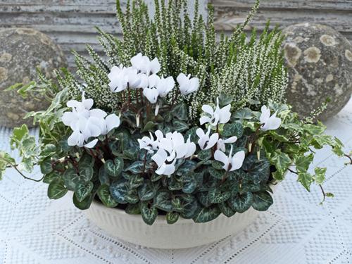 Of spring and summer white on white flower arrangement white on white flower arrangement mightylinksfo