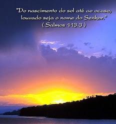 SALMO113.3