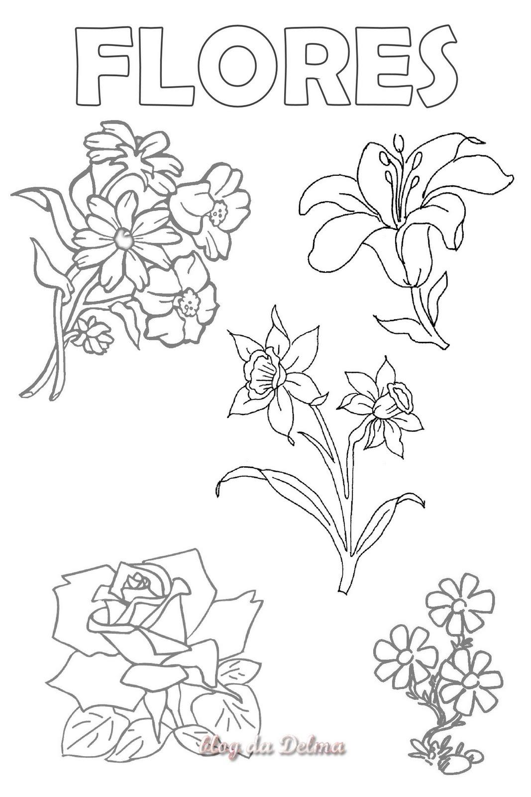 atividades alfabetizacao jardim horta pomar:Não devemos esquecer das plantas medicinais, dos chás, dos unguentos