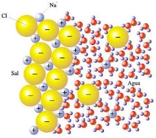 Clculo de actividades en disoluciones acuosas de electrolitos fuertes