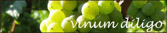 vinum diligo