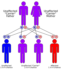 1-4 gene risk chart