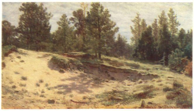 Этюд с натуры 1890 г холст масло 34х59
