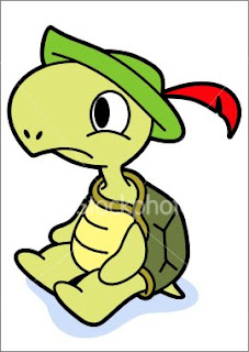 Turtle Cartoon Picture