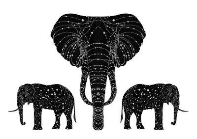 Elefánt csillagkép
